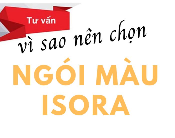 NGÓI SÓNG MÀU XÁM ISORA- S02